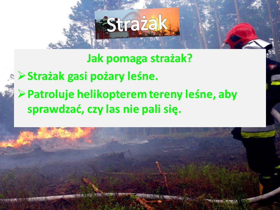 Strażak Jak pomaga strażak Strażak gasi pożary leśne.