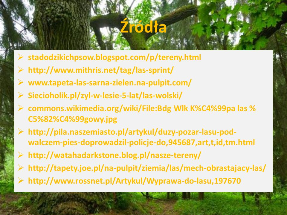 Źródła stadodzikichpsow.blogspot.com/p/tereny.html