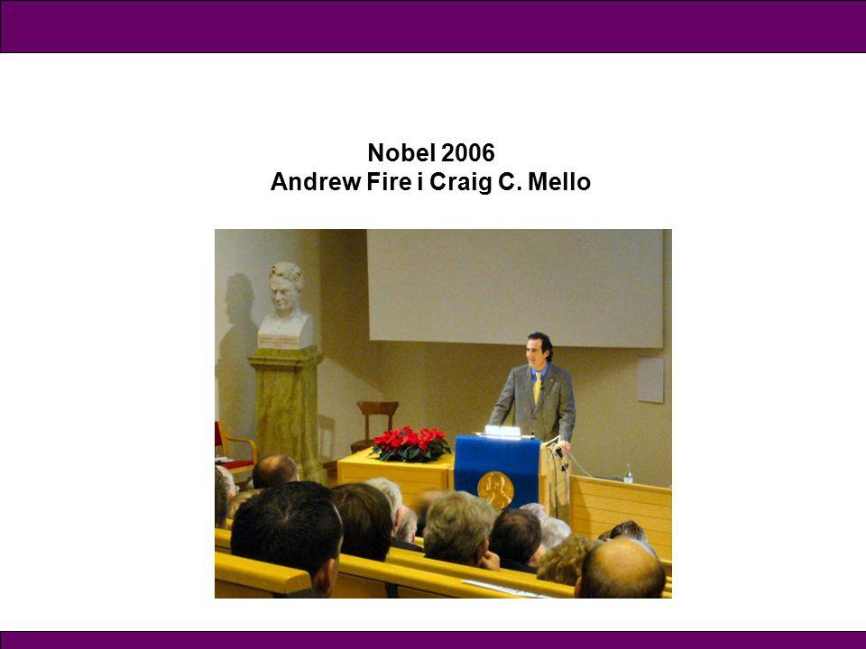Andrew Fire i Craig C. Mello