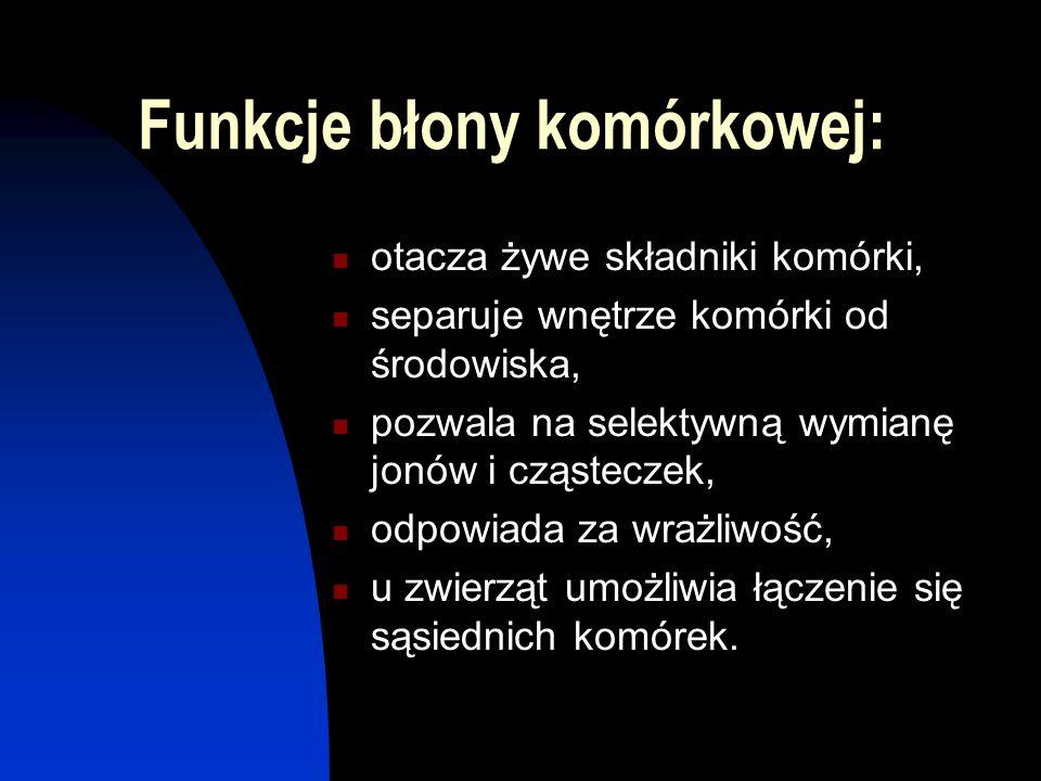 Funkcje błony komórkowej: