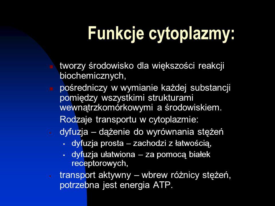 Funkcje cytoplazmy: tworzy środowisko dla większości reakcji biochemicznych,