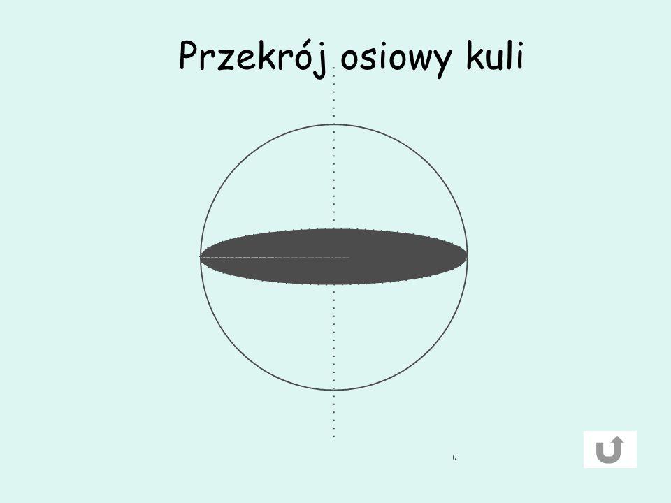 Przekrój osiowy kuli