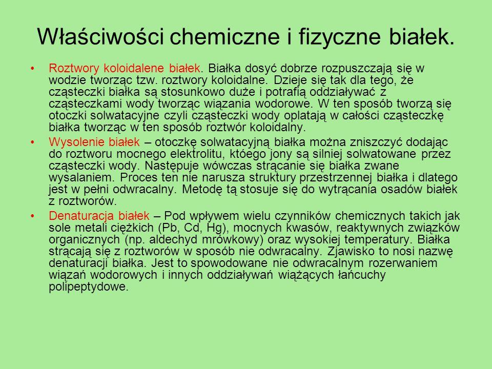 Właściwości chemiczne i fizyczne białek.