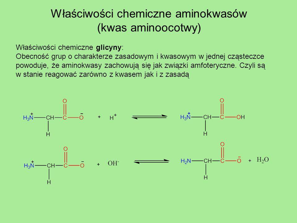 Właściwości chemiczne aminokwasów (kwas aminoocotwy)