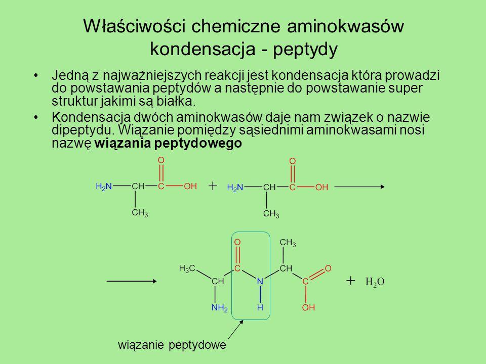 Właściwości chemiczne aminokwasów kondensacja - peptydy