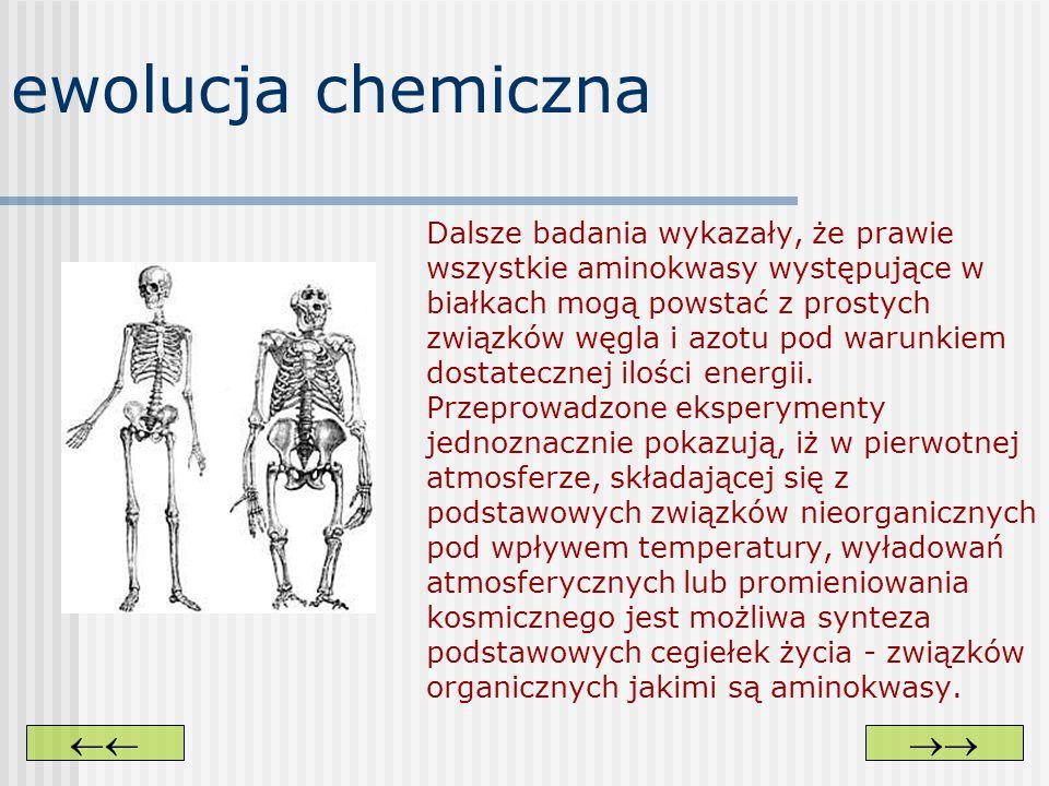 ewolucja chemiczna  