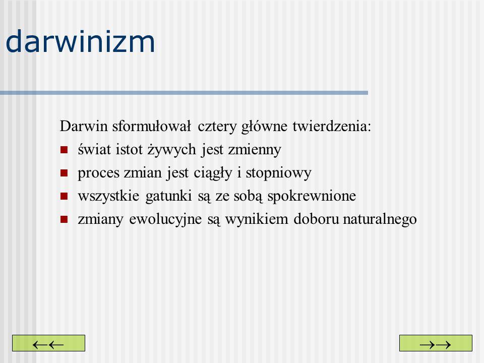 darwinizm Darwin sformułował cztery główne twierdzenia: