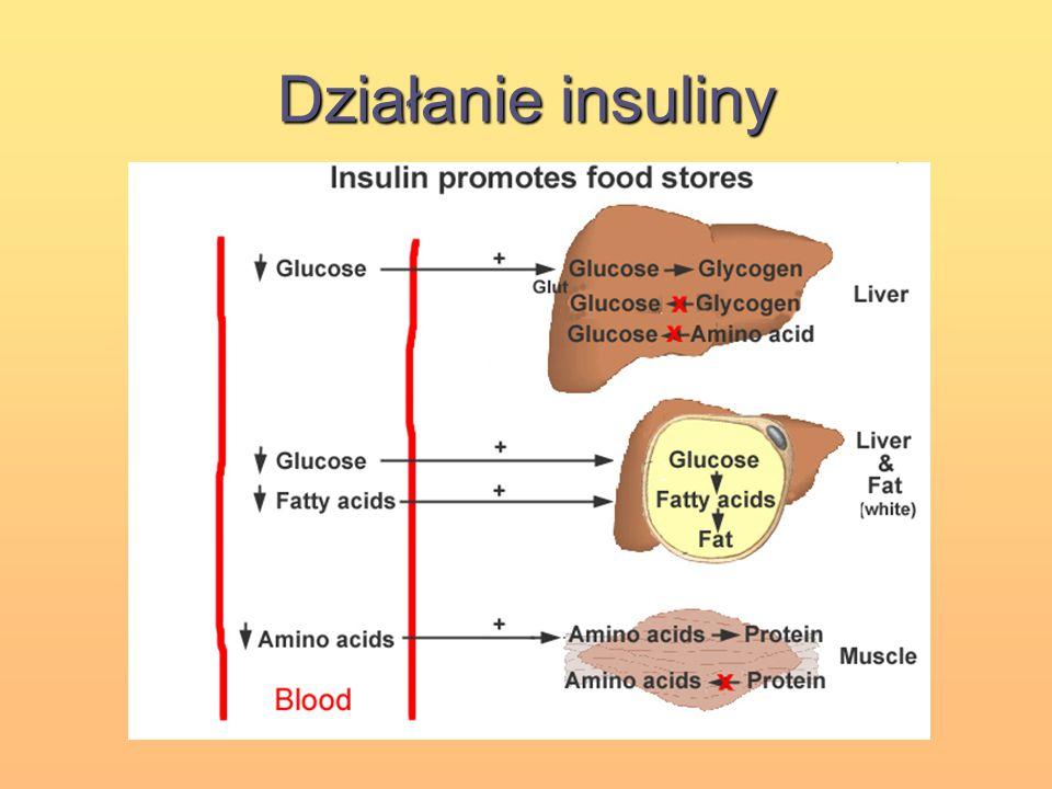 Działanie insuliny