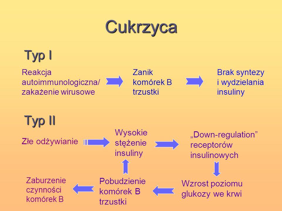 Cukrzyca Typ I Typ II Wysokie stężenie insuliny