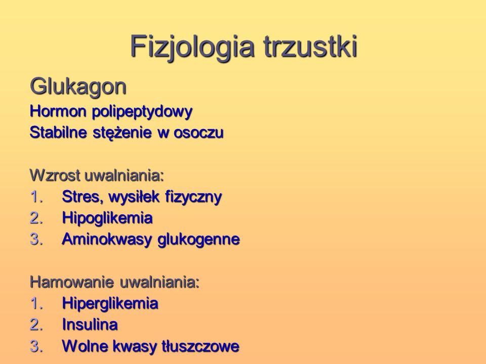 Fizjologia trzustki Glukagon Hormon polipeptydowy