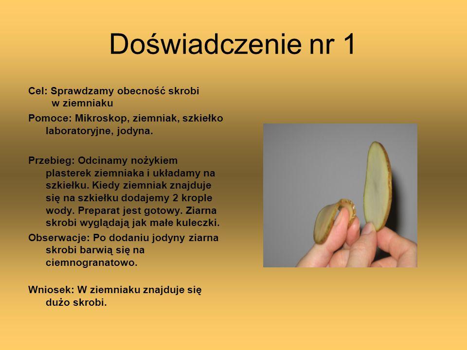 Doświadczenie nr 1 Cel: Sprawdzamy obecność skrobi w ziemniaku
