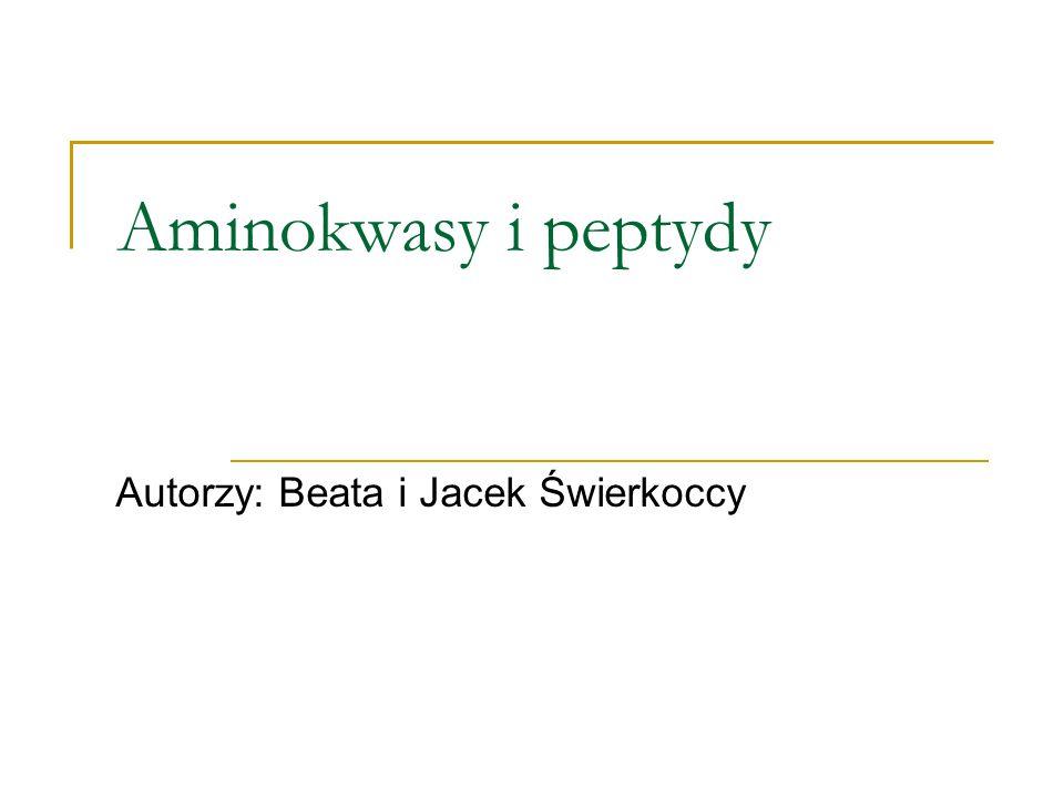Autorzy: Beata i Jacek Świerkoccy