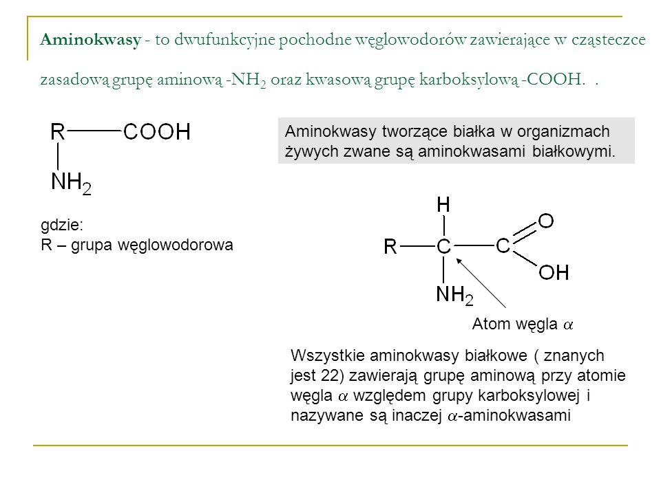 Aminokwasy - to dwufunkcyjne pochodne węglowodorów zawierające w cząsteczce zasadową grupę aminową -NH2 oraz kwasową grupę karboksylową -COOH. .