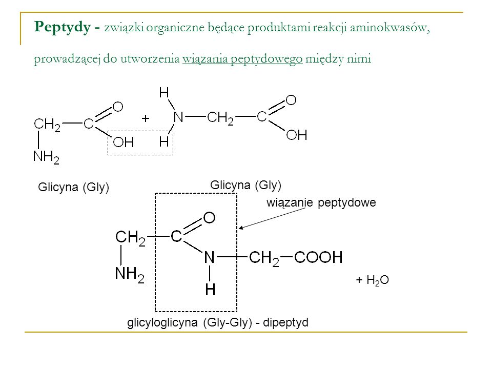 Peptydy - związki organiczne będące produktami reakcji aminokwasów, prowadzącej do utworzenia wiązania peptydowego między nimi