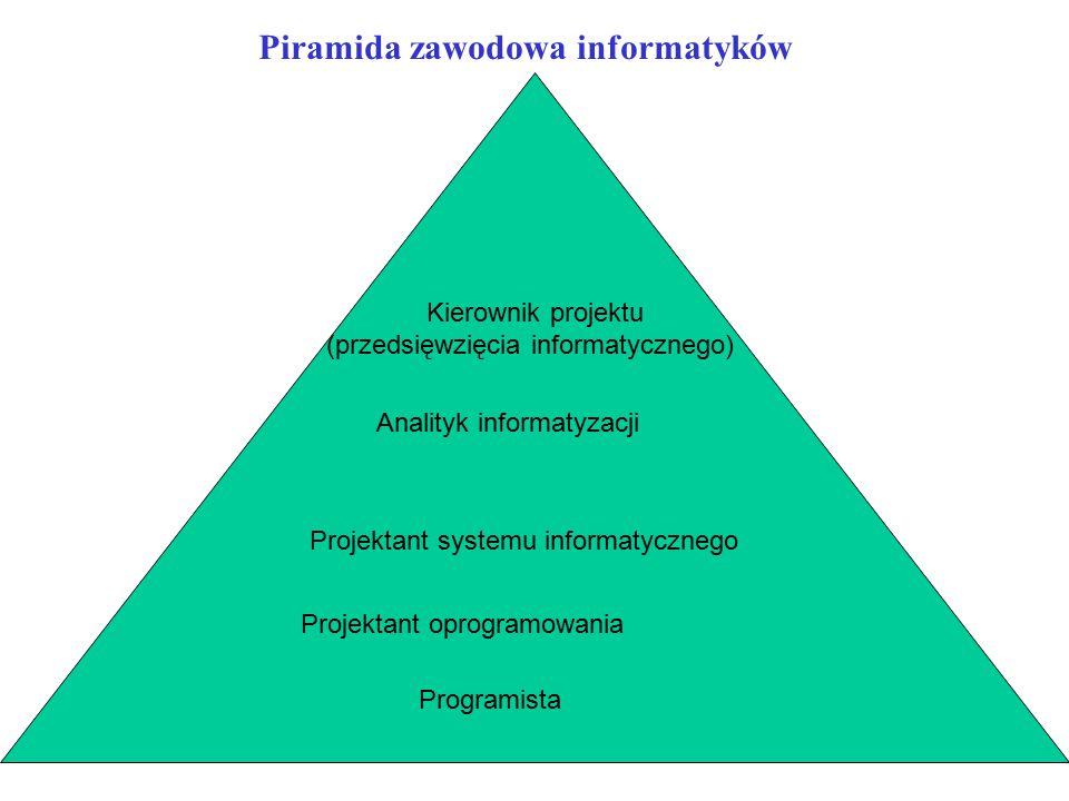 Piramida zawodowa informatyków