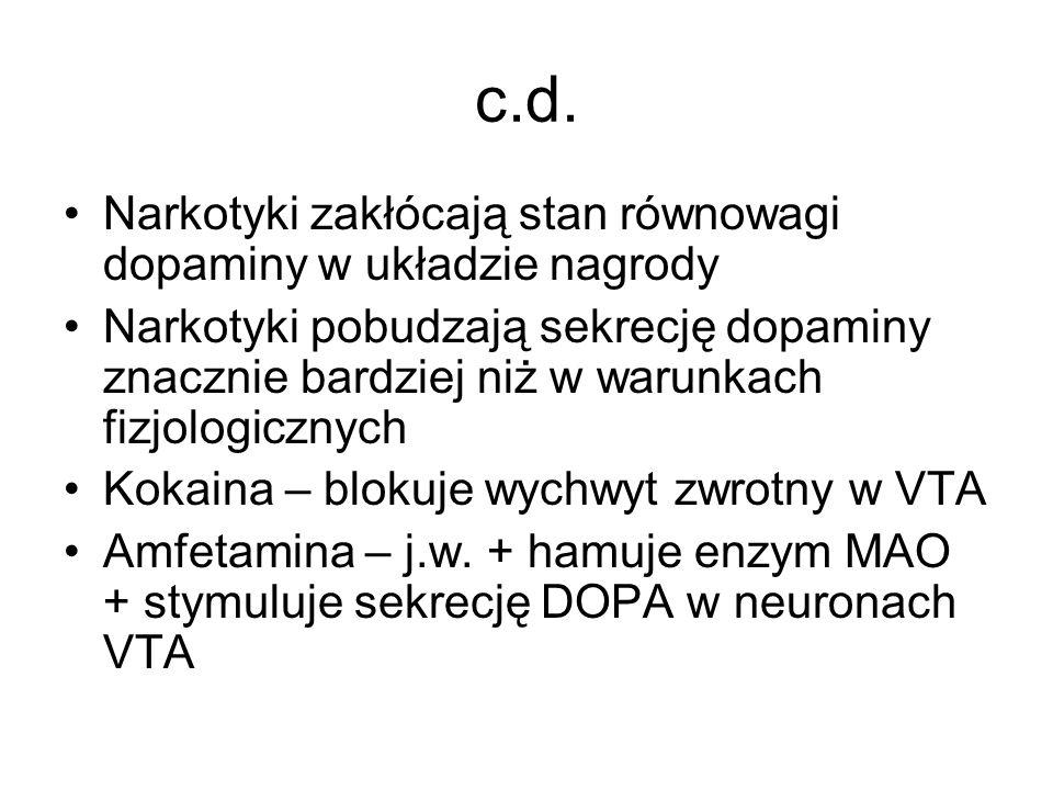 c.d. Narkotyki zakłócają stan równowagi dopaminy w układzie nagrody