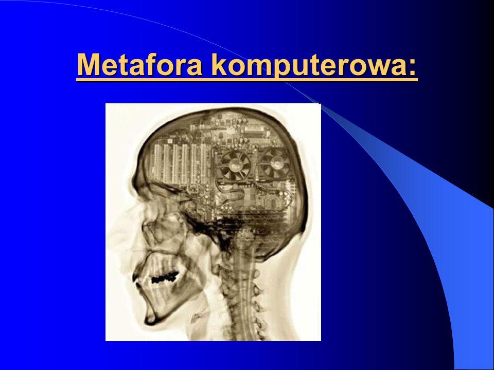 Metafora komputerowa: