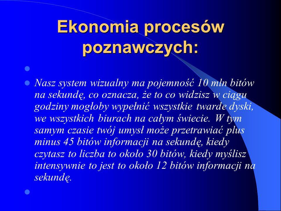 Ekonomia procesów poznawczych:
