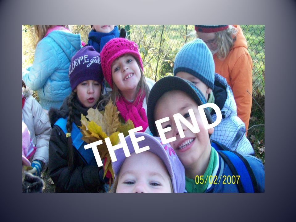THE THE END