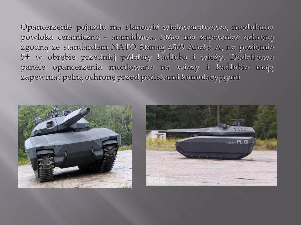Opancerzenie pojazdu ma stanowić wielowarstwowa, modularna powłoka ceramiczno - aramidowa, która ma zapewniać ochronę zgodną ze standardem NATO Stanag 4569 Aneks A, na poziomie 5+ w obrębie przedniej półsfery kadłuba i wieży.