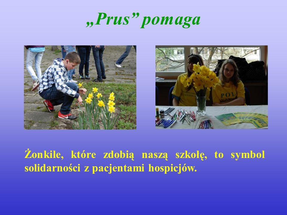 """""""Prus pomaga Żonkile, które zdobią naszą szkołę, to symbol solidarności z pacjentami hospicjów."""