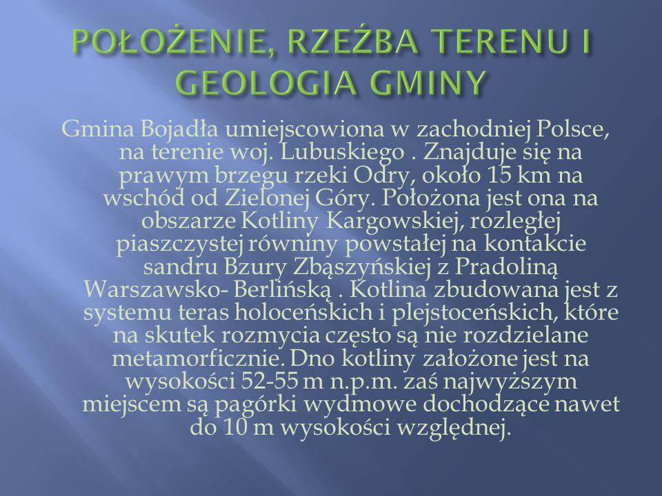POŁOŻENIE, RZEŹBA TERENU I GEOLOGIA GMINY