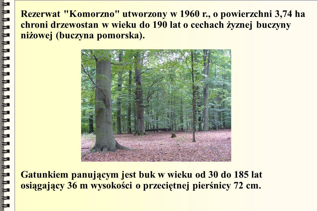 Rezerwat Komorzno utworzony w 1960 r