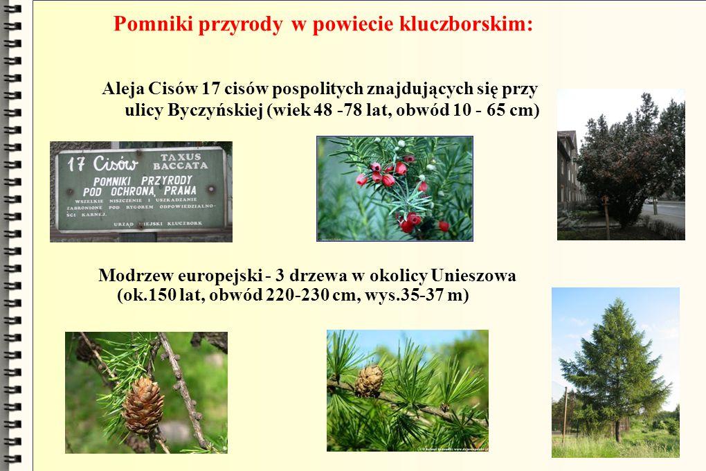 Pomniki przyrody w powiecie kluczborskim: