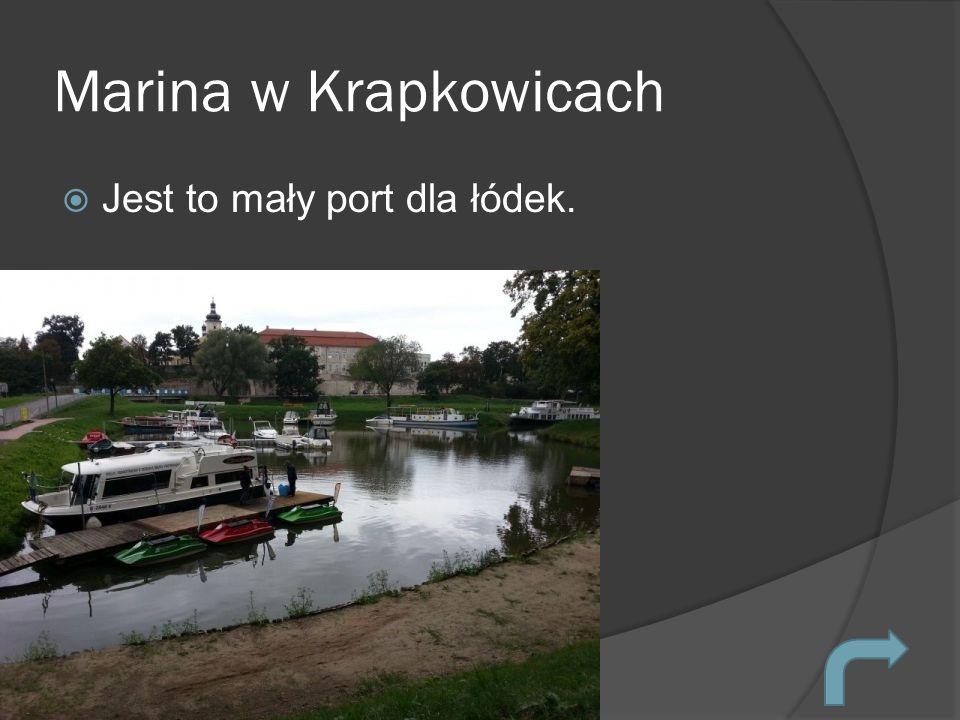 Marina w Krapkowicach Jest to mały port dla łódek.