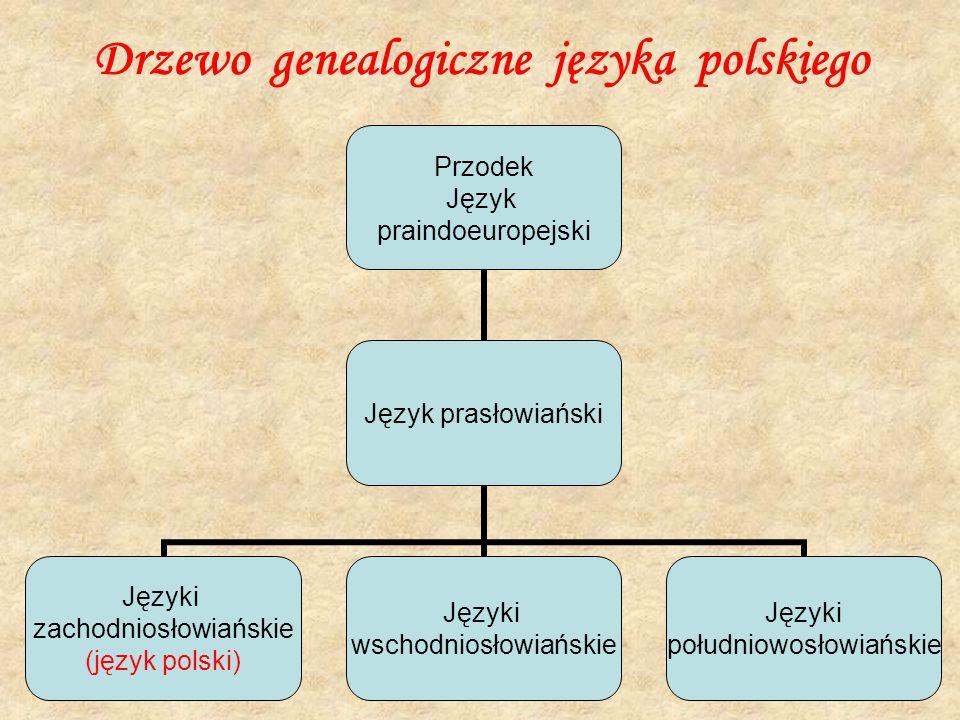 Drzewo genealogiczne języka polskiego