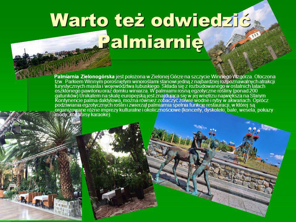 Warto też odwiedzić Palmiarnię