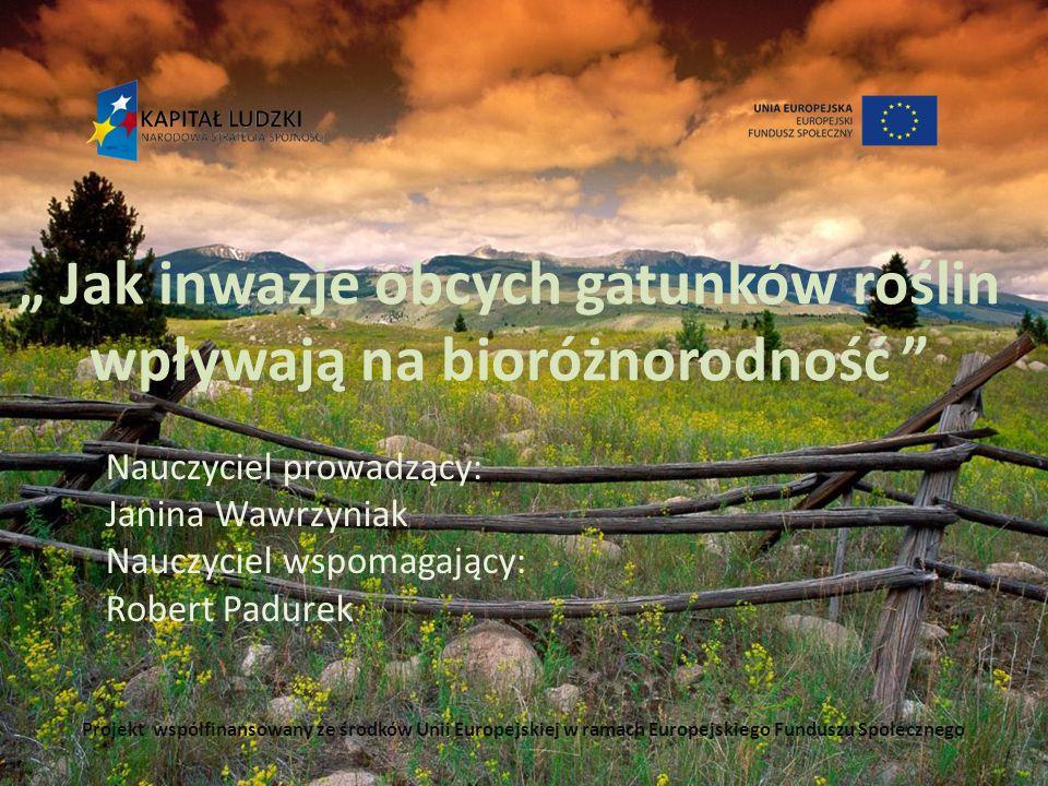 """"""" Jak inwazje obcych gatunków roślin wpływają na bioróżnorodność"""