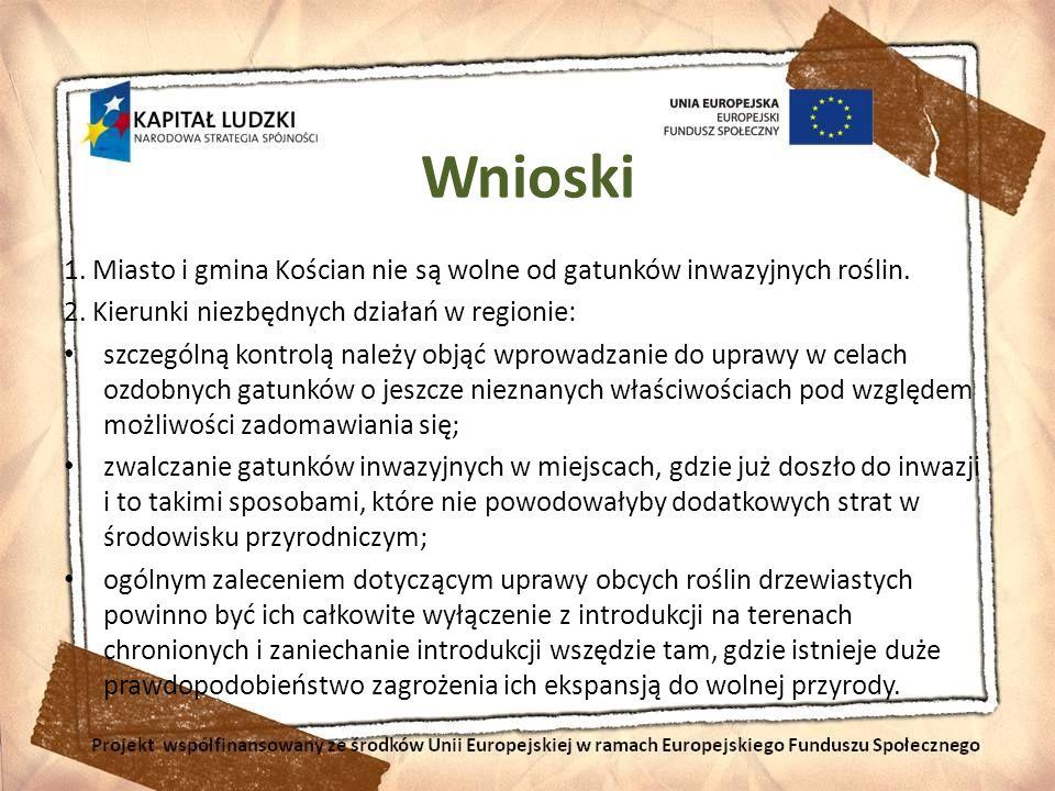 Wnioski 1. Miasto i gmina Kościan nie są wolne od gatunków inwazyjnych roślin. 2. Kierunki niezbędnych działań w regionie: