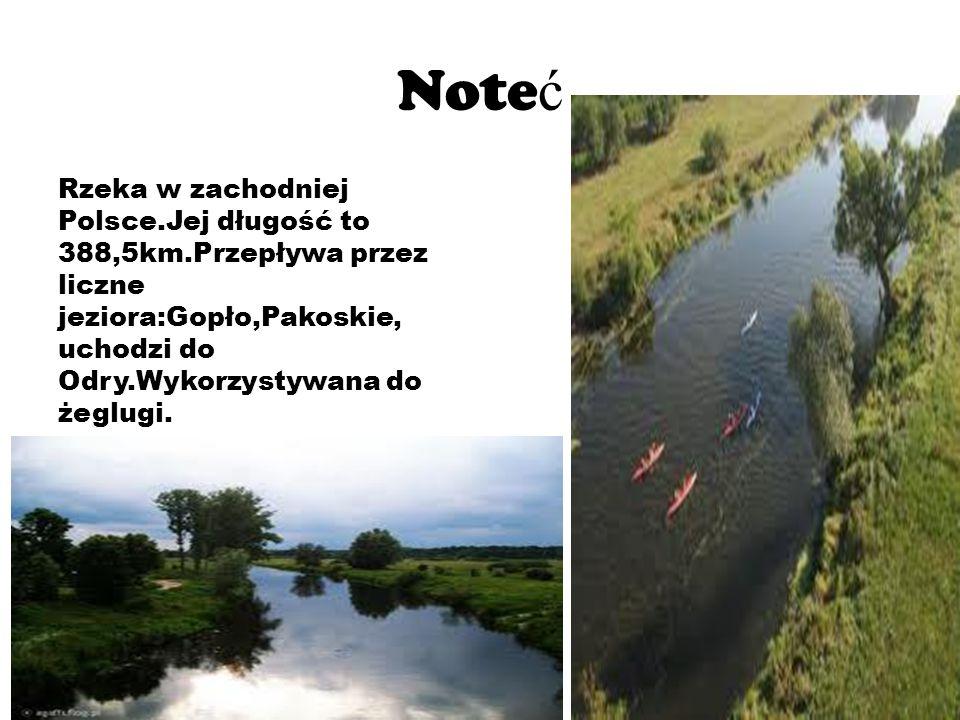Noteć Rzeka w zachodniej Polsce.Jej długość to 388,5km.Przepływa przez liczne jeziora:Gopło,Pakoskie, uchodzi do Odry.Wykorzystywana do żeglugi.