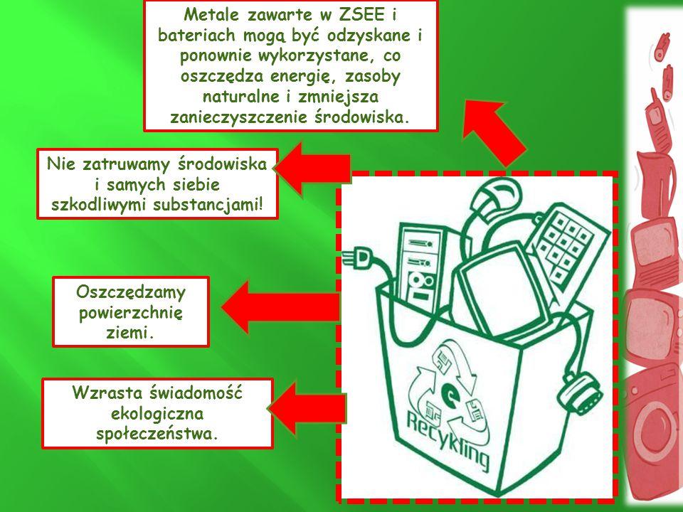 Nie zatruwamy środowiska i samych siebie szkodliwymi substancjami!