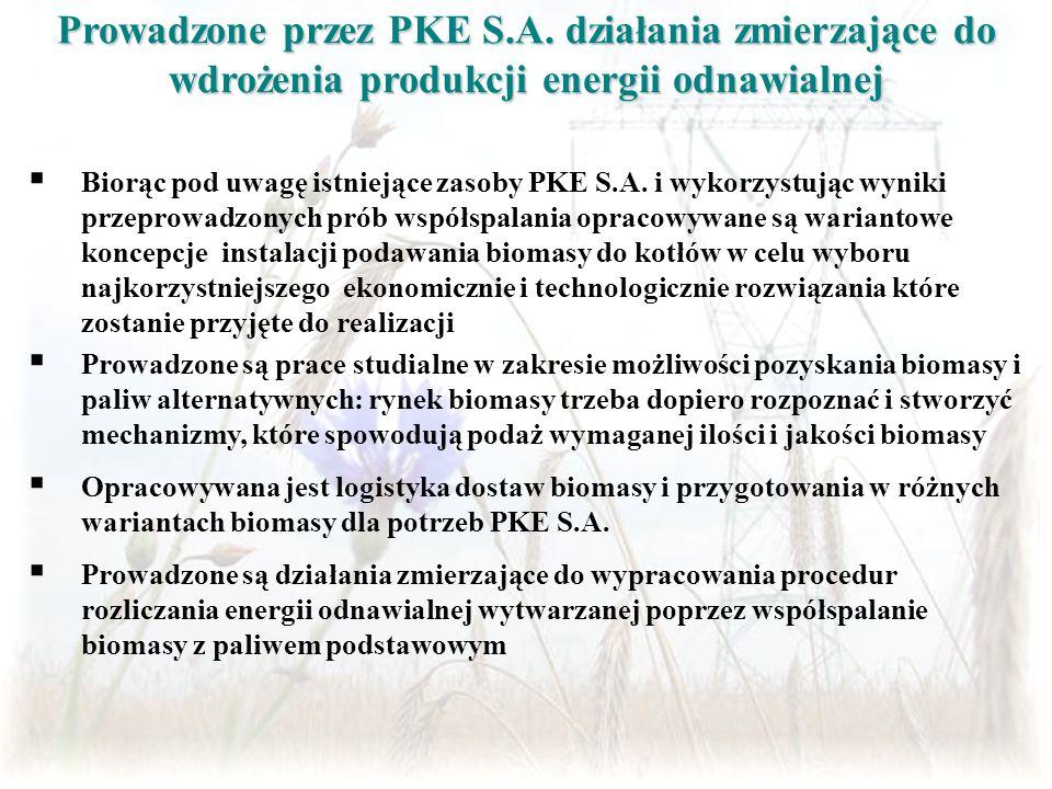 Prowadzone przez PKE S. A
