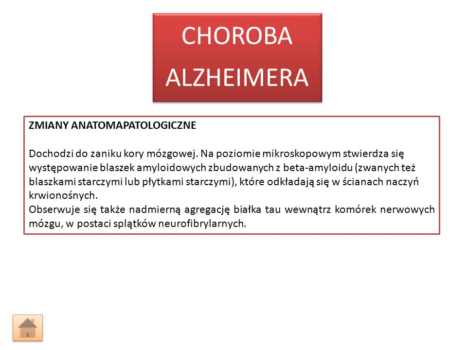 ALZHEIMERA CHOROBA.