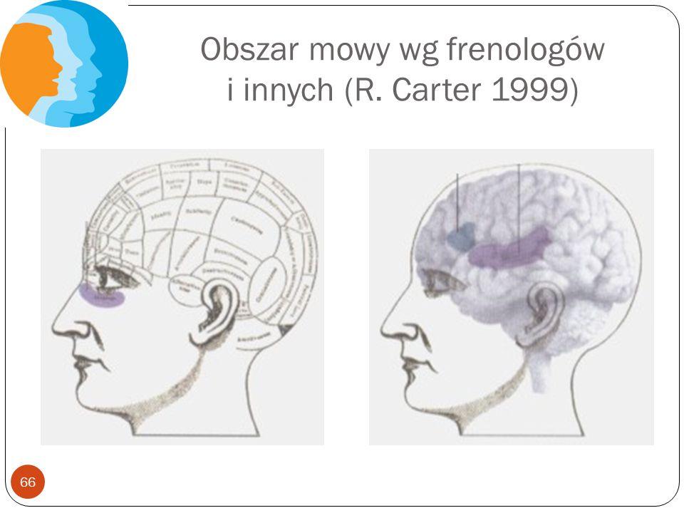 Obszar mowy wg frenologów i innych (R. Carter 1999)