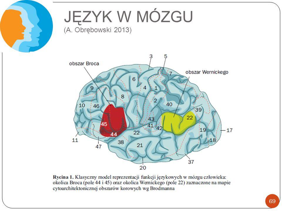 JĘZYK W MÓZGU (A. Obrębowski 2013)