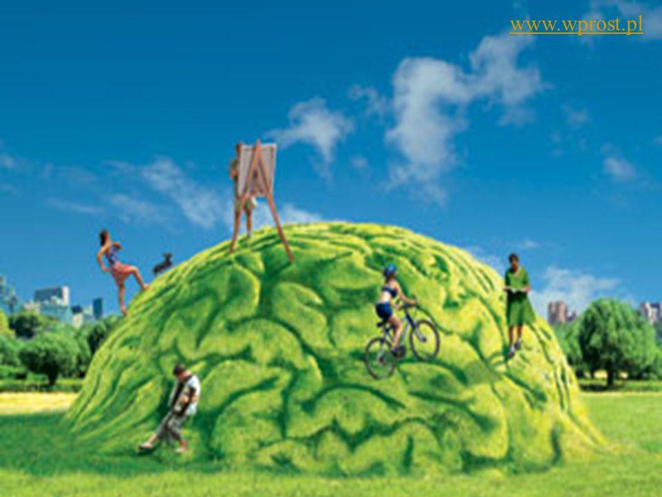 www.wprost.pl Ćwiczenia mózgu