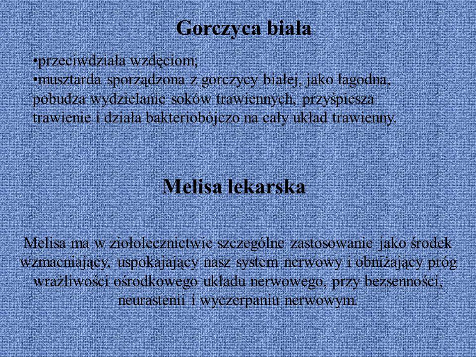 Gorczyca biała Melisa lekarska przeciwdziała wzdęciom;