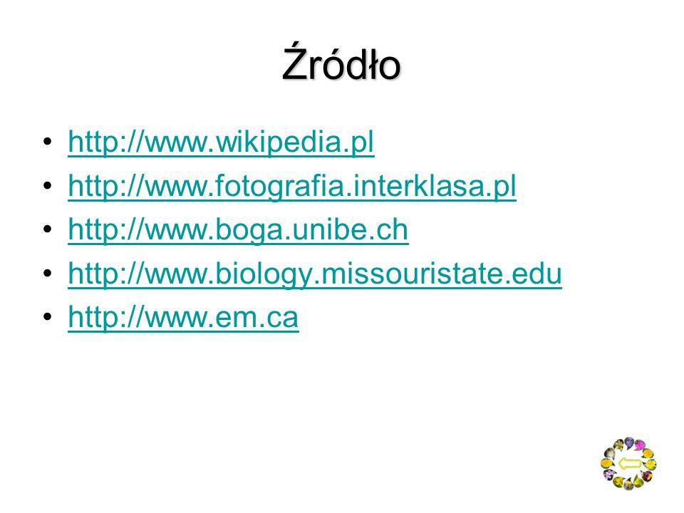 Źródło http://www.wikipedia.pl http://www.fotografia.interklasa.pl
