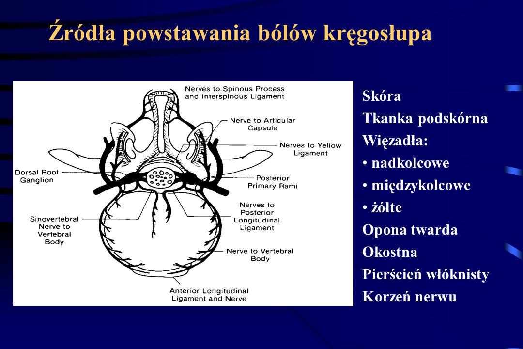 Źródła powstawania bólów kręgosłupa