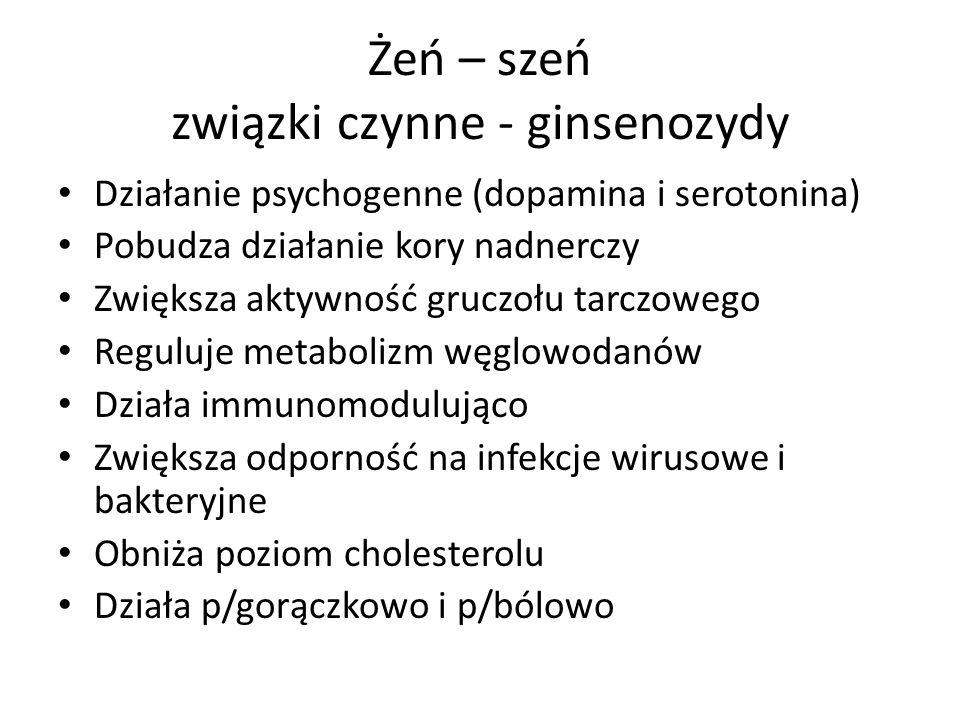 Żeń – szeń związki czynne - ginsenozydy