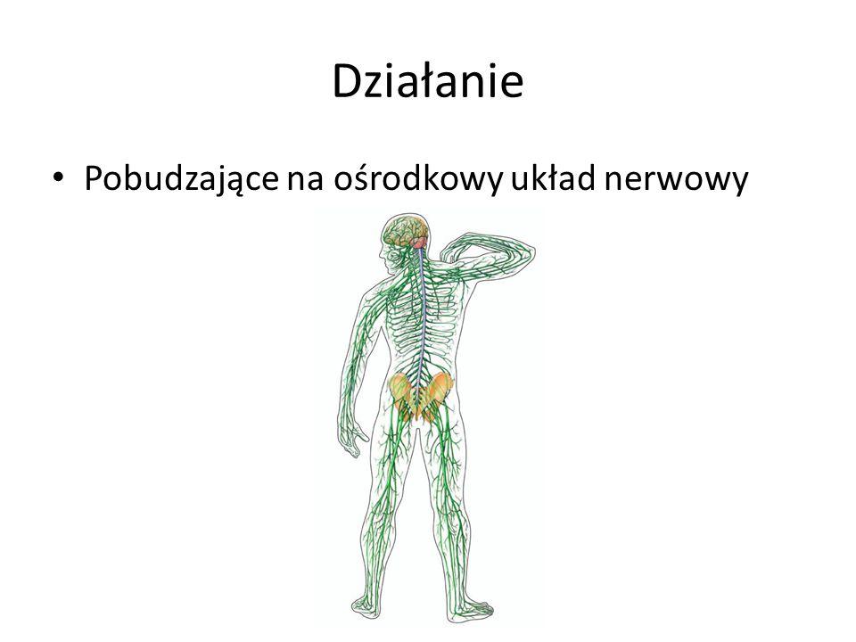 Działanie Pobudzające na ośrodkowy układ nerwowy