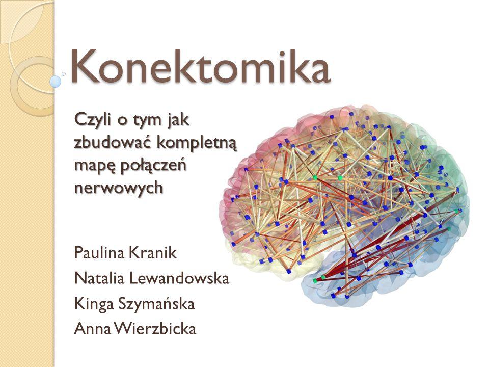 Paulina Kranik Natalia Lewandowska Kinga Szymańska Anna Wierzbicka