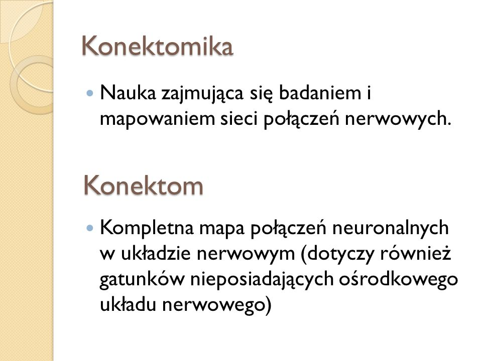 Konektomika Nauka zajmująca się badaniem i mapowaniem sieci połączeń nerwowych.