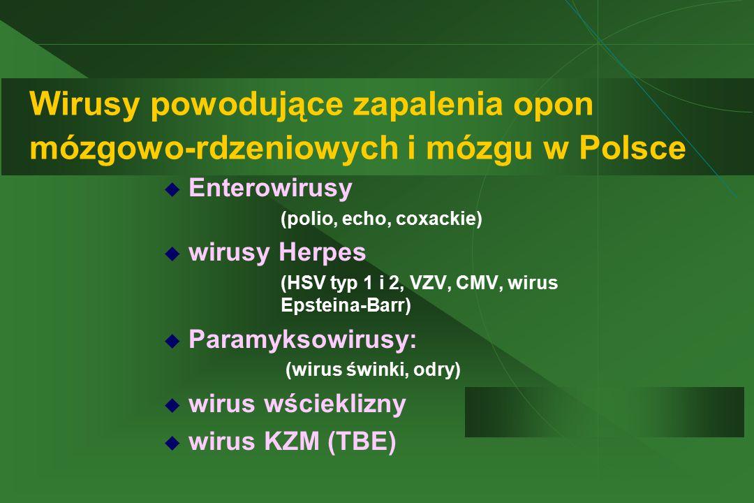 Wirusy powodujące zapalenia opon mózgowo-rdzeniowych i mózgu w Polsce