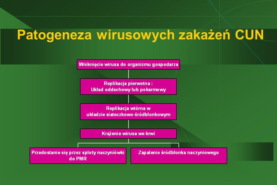 Patogeneza wirusowych zakażeń CUN