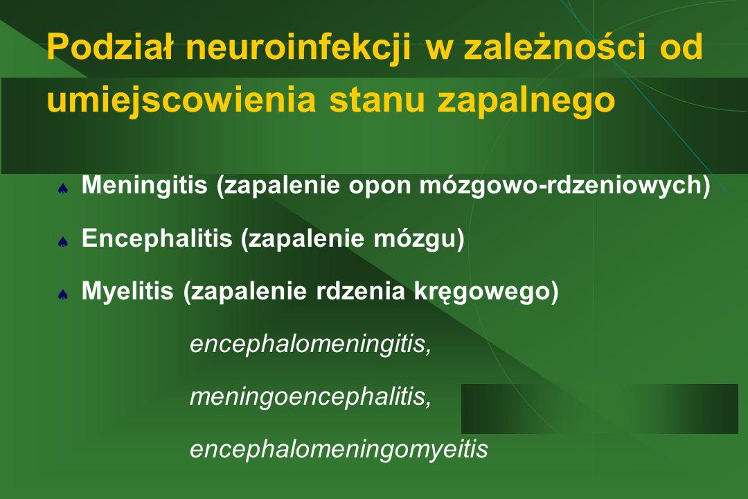 Podział neuroinfekcji w zależności od umiejscowienia stanu zapalnego